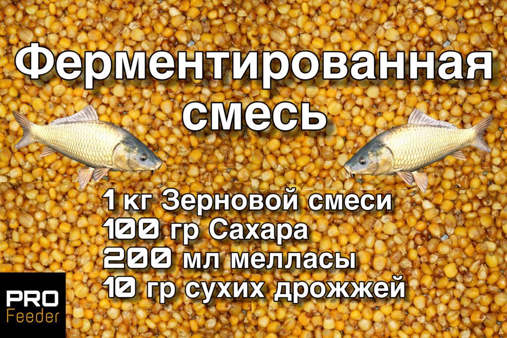 Ферментированная кукуруза